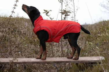 "On Sale: (3XL) Warm Dog Winter Jacket w/ Fleece Lining, 25"" Red"