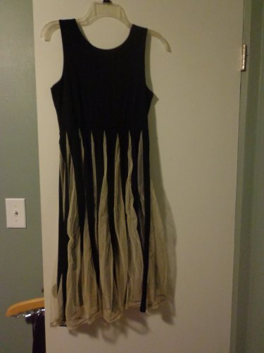 SouthStore Clothing Fit and Flare Black Dress with Tulle Size 2