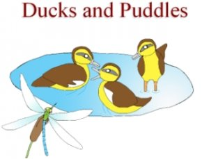 Ducks and Puddles and Coloring Book