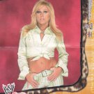 Terri - WWE Absolute Divas 2002 Orange Wrestling Mini Poster