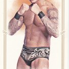 Randy Orton - WWE 2012 Topps Heritage Allen & Ginter Mini Wrestling Trading Card #9