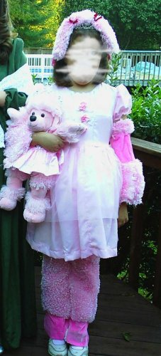 Pink Poodle Ballerina FRU FRU Halloween Build A Bear Costume Girl 10