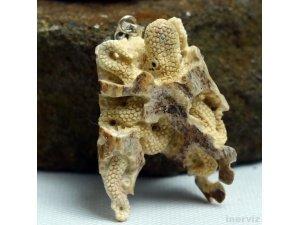 """Hand Carved Octopus 2.4"""" Natural Deer Antler Pendant Sterling silver 925 AP1522"""