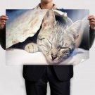Minimal Brain Sides Poster 36x24 inch