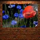 Poppies And Cornflowers Poster 36x24 inch