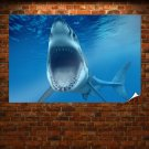 Big White Shark Jaws Poster 36x24 inch