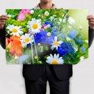 Beautiful Field Flowers Poster 36x24 inch