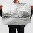 Horse Washington Dc Retro Vintege Poster 32x24 inch