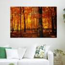 Autumn Forest  Art Poster Print  36x24 inch