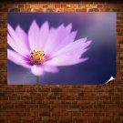 Purple Flower  Art Poster Print  36x24 inch