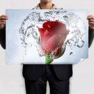 Beautiful Red Rose  Art Poster Print  36x24 inch