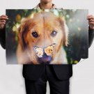 Dog And Butterfly  Art Poster Print  36x24 inch