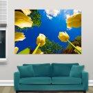 Flower Tulip  Art Poster Print  36x24 inch