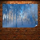 Blue Forest Hd  Art Poster Print  36x24 inch
