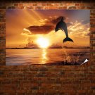 Dolphin Jump  Art Poster Print  36x24 inch