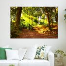 Forest Road  Art Poster Print  36x24 inch