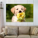 Cute Golden Retriever Puppy  Art Poster Print  36x24 inch