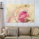 Beautiful Rose  Art Poster Print  36x24 inch