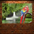 Macaw Parrots Over Waterfall  Art Poster Print  36x24 inch