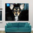 Beautiful Chihuahua  Art Poster Print  32x24 inch