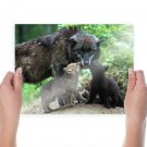 Hd Wolf Family  Art Poster Print  24x18 inch