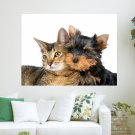Cats And Dogs  Art Poster Print  24x18 inch