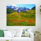 Flowers On Mountain Meadow  Art Poster Print  24x18 inch