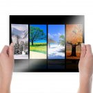 Four Seasons  Art Poster Print  24x18 inch