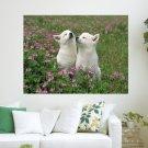 Enjoy The Beautiful Nature  Art Poster Print  24x18 inch