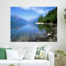Clean Water In Forest  Art Poster Print  24x18 inch