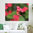 Beautiful Red Flowers Hd Art Poster Print  24x18 inch