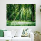 Lights Through The Trees  Art Poster Print  24x18 inch