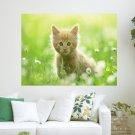 Cute Kitty In Grass  Art Poster Print  24x18 inch