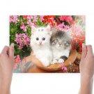 Best Friends  Art Poster Print  24x18 inch