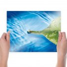 3d Floating Green Leaf Hd  Art Poster Print  24x18 inch