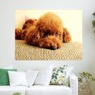 Cute Puppy Desktop Background  Art Poster Print  24x18 inch