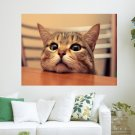 Bored Cat  Art Poster Print  24x18 inch