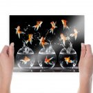 Fishes Jumping  Art Poster Print  24x18 inch