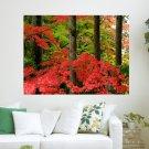 Autumn Colors  Art Poster Print  24x18 inch