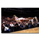 Dennis Rodman Bulls Backboard King Basketball Poster 32x24