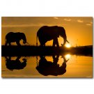 Elephants Sunset Africa Wild Animals Nature Poster 32x24