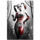 Harley Quinn Batman Arkham City Origins Video Game Poster 32x24