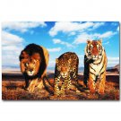 Leopard Tiger Lion Africa Wild Animals Poster 32x24