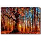 Autumn Forest Path Sunshine Landscape Poster Print 32x24