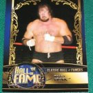 TERRY FUNK - 2012 Topps WWE Classis Hall of Famers #22