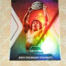 RICKY STEAMBOAT - 2010 Topps Platinum WWE Performance #PP25