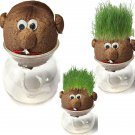 Cute DIY Magic Grass Plant Pot Grass Head Doll Indoor Potted Plant