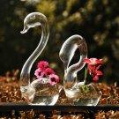 2pcs Loving Swans Glass Vase for Plants! Fensghui Romance!
