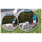6 ft Anti Pulling Training Dog Leash - 2 Pcs
