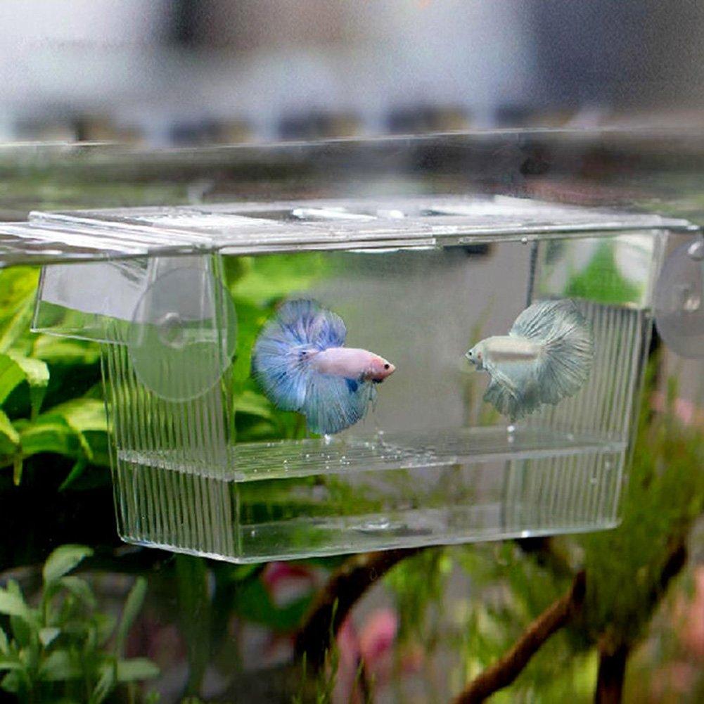 Aquarium Fish Breeding Hatchery Young Fish Incubator Isolation Box - Large 10x7x12.7cm